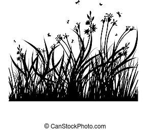 łąka, sylwetka