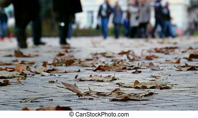 Autumn People Walking - People Walking on Sidewalk with...