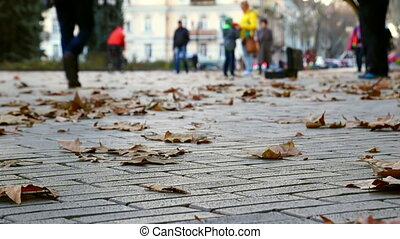 Autumn. People Walking. - People Walking on Sidewalk with...