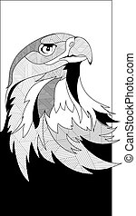 eagle head sketch in vector interpretation