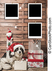 Christmas photo frame, dog with Santa hat and three empty...
