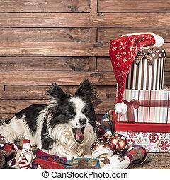 Yawning dog Christmas postcard