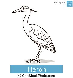 Heron learn birds coloring book vector - Heron learn birds...