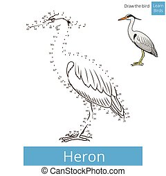 Heron bird learn to draw vector - Heron learn birds...
