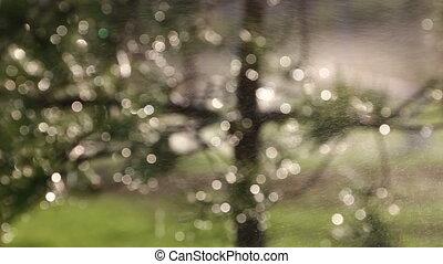 agriculture sprinkler - slow sprinkler