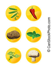Veggie Icons - Veggie icons on white background