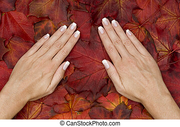 manicure - beautiful hands with perfect makeup