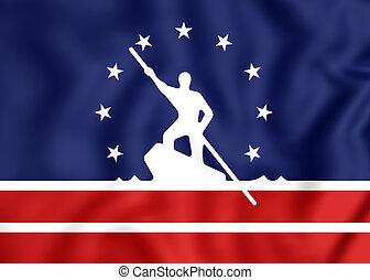 Flag of Richmond (Virginia), USA. - 3D Flag of Richmond...