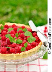 Fresh Raspberry Jelly Tart, copy space for your text, selective focus