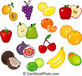 Fruits - Various fruit illustrations on white background