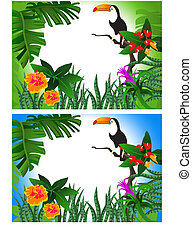 Toucan - Illustration of a toucan in the forest