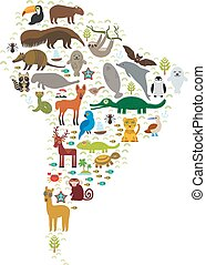 South America sloth anteater toucan lama bat fur seal armadillo boa manatee monkey dolphin Maned wolf raccoon jaguar macaw lizard turtle crocodile deer penguin Blue-footed booby Capybara. Vector