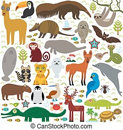 South America sloth anteater toucan lama bat fur seal armadillo boa manatee monkey dolphin Maned wolf raccoon jaguar Hyacinth macaw lizard turtle crocodile deer penguin  booby Capybara. Vector