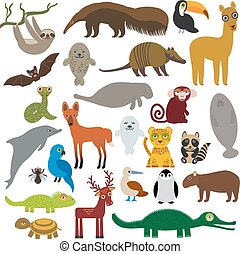 South America sloth anteater toucan lama bat fur seal armadillo boa manatee monkey dolphin Maned wolf raccoon Hyacinth macaw lizard turtle crocodile deer penguin Blue-footed booby Capybara. Vector