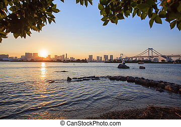 city scape of odaiba tokyo japan important landmark and...