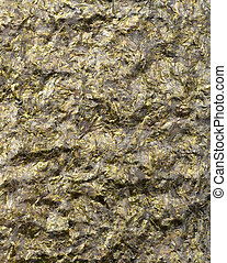 nori - sheet of dried nori
