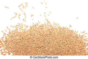 Cumin isolated on a white background