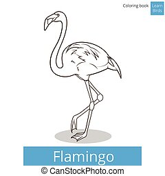 Flamingo learn birds coloring book vector - Flamingo learn...