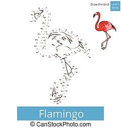 Flamingo bird learn to draw vector - Flamingo learn birds...
