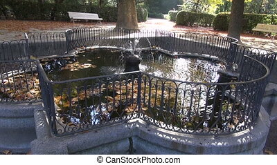 historical fountain in October city - beautiful magical...