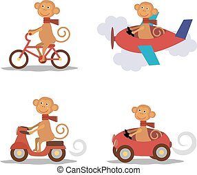Set - cute monkey with scarf on transport