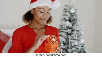 Lovely young woman holding a Christmas gift - Lovely young...