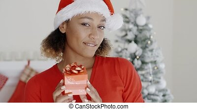 Smiling attractive woman holding a Christmas gift - Smiling...