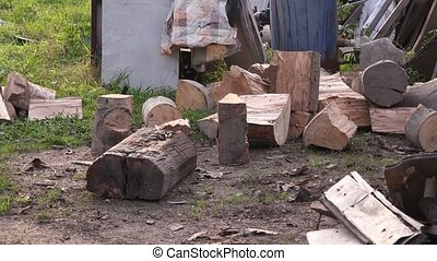 Lumberjack cutting firewood logs with axe, man splitting...