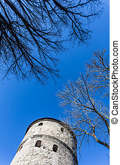 Sky of old Tallinn - View of fortress towers on sky...
