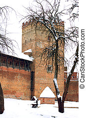 ancient castle - the ancient castle in snow