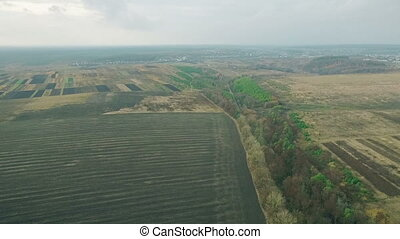 Aerial view of a beautiful field of wheat fall