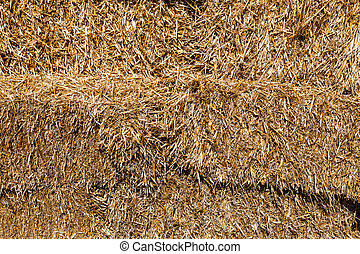 haystack close up shot for background