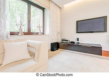 Big screen TV in contemporary luxurious house