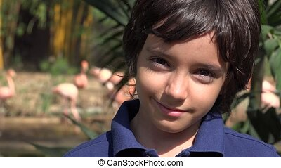 Preteen Boy Near Flamingos at Nature Reserve