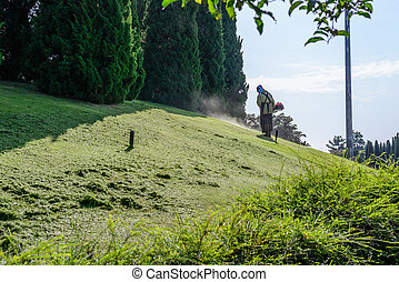 Worker mowing lawn in garden.