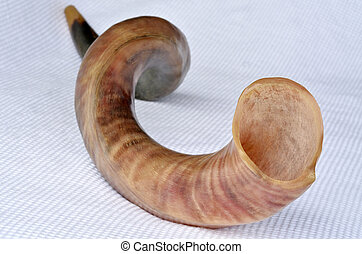 Shofar horn from the horn of a Greater kudu on Rosh Hashanah...