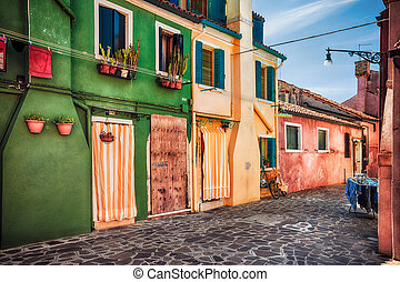Colour houses on Burano island, province of Venice -...