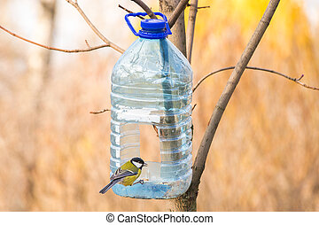 Great Tit and Birds Feeder - Big plastic bottle used as...