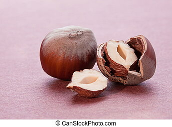 Hazelnut nut closeup with shadow on red background