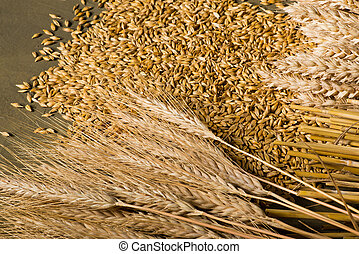 how to cook barley ceral