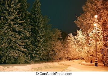 Trees covered with snow and shining lantern through snowing.