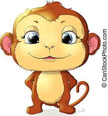 monkey sitting on a white background