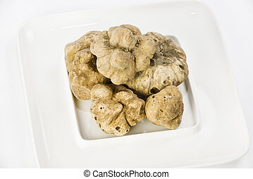 Many white truffles from Piedmont on ceramic plate placed on...