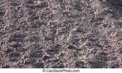 Freshly ploughed farmland soil - Freshly ploughed farmland...