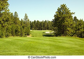 Fairway in the Trees - a green fairway cuts through tall...
