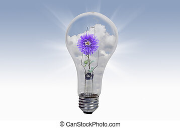 Natural Energy - Purple dahlia in light bulb.