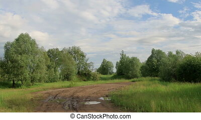 Movement of clouds over the meadow. Lubinsky District, Omsk...