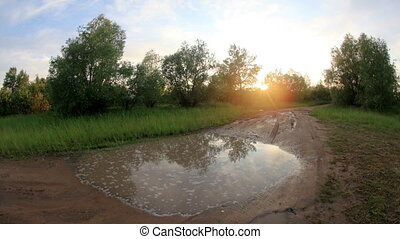 Sunset in the forest after the rain clouds reflected in a...