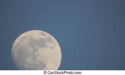 Moon on twilight sky - Last quarter moon on dark blue...