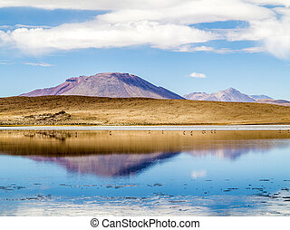 Laguna Kara salt lake with reflection of the mountain,...